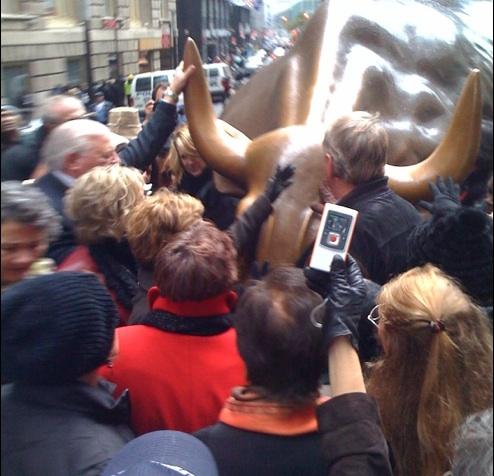 golden-bull