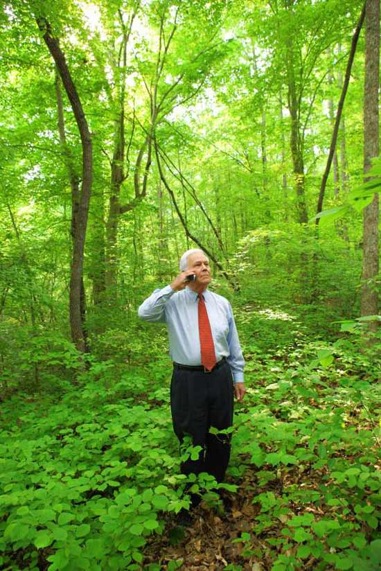 lost in the woods An archive of our own, a project of the organization for transformative works.