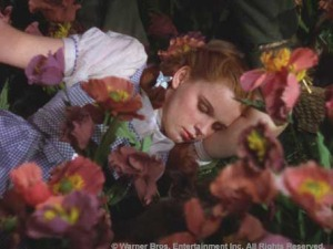 Oz-dorothy asleep