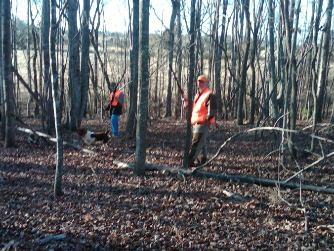 Quail hunt, January 2012